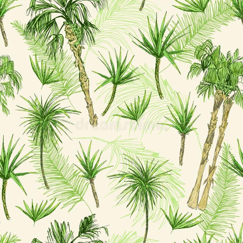 Palmtrees Bezszwowy wzór Zieleni koksu lub królowej drzewka palmowe z liśćmi Plaża i tropikalny las deszczowy, pustynna coco flor royalty ilustracja
