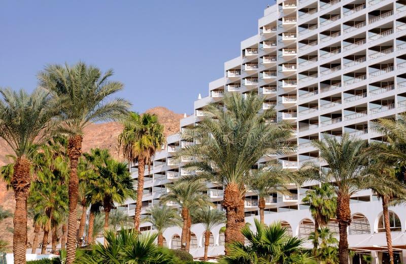 Palmtrees e hotel foto de stock royalty free