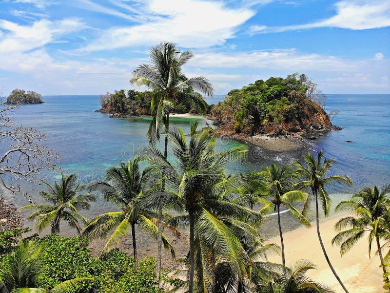 Palmtrees nas praias tropicais de Panamá fotos de stock royalty free