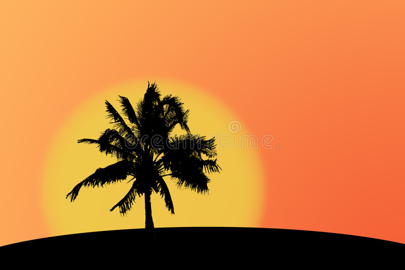 Palmtreesilhouette Arkivfoton