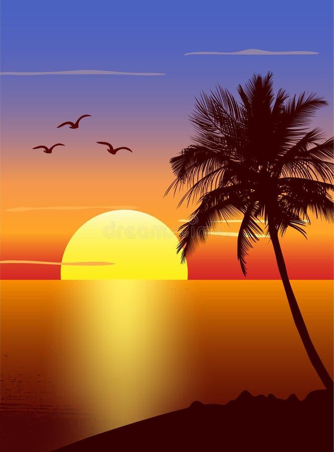 palmtreesilhouettesolnedgång stock illustrationer