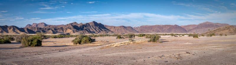 Palmwag-Zugeständnis-Wüstenpanoramablick lizenzfreies stockfoto