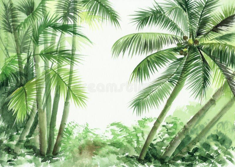 Palmwildernis vector illustratie