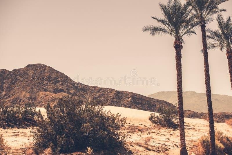 Palmwoestijn Californië royalty-vrije stock afbeelding