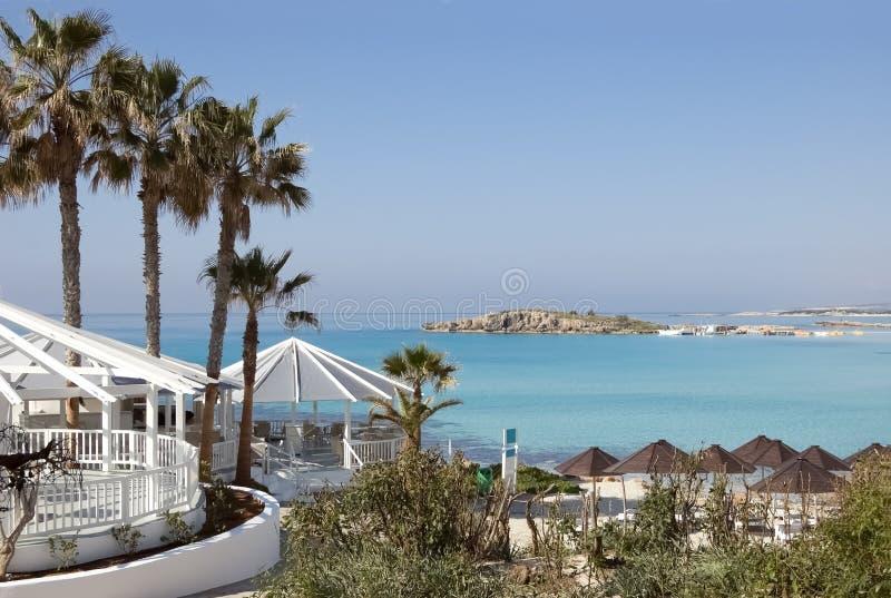 Palmy, bar, parasole na pięknej plaży w Cypr obrazy stock