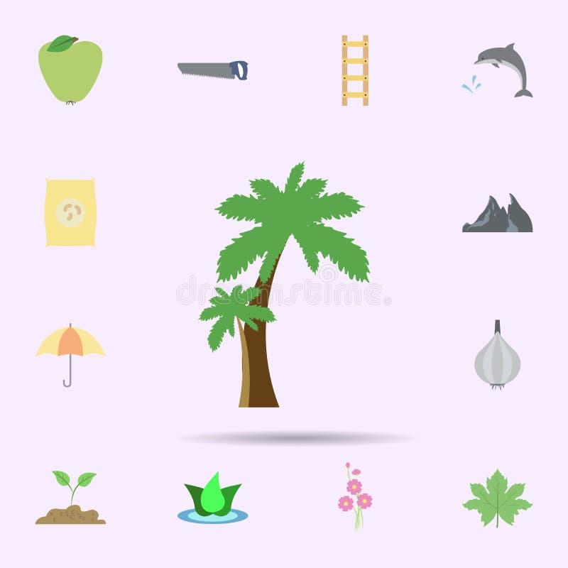 palmy barwiona ikona Ogólnoludzki ustawiający natura dla strona internetowa projekta i rozwoju, app rozwój ilustracja wektor