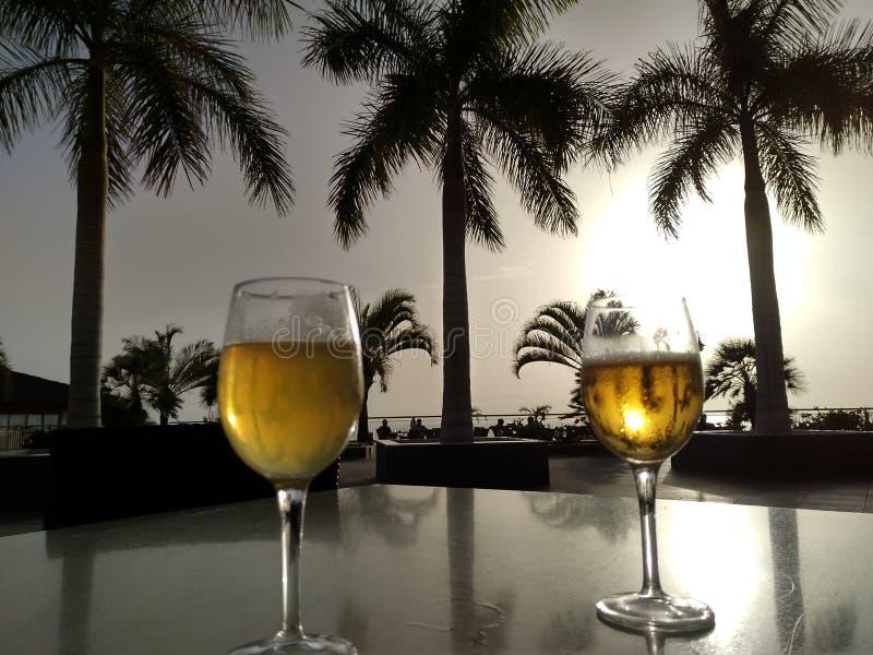 Palmy i piwo zdjęcia royalty free