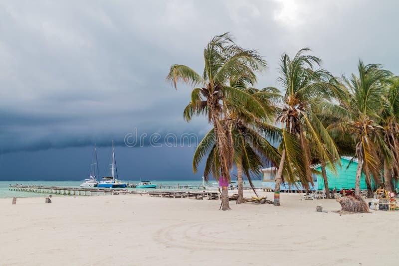 Palmy i plaża w Caye doszczelniacza wiosce, Belize Burza jest comin zdjęcie royalty free