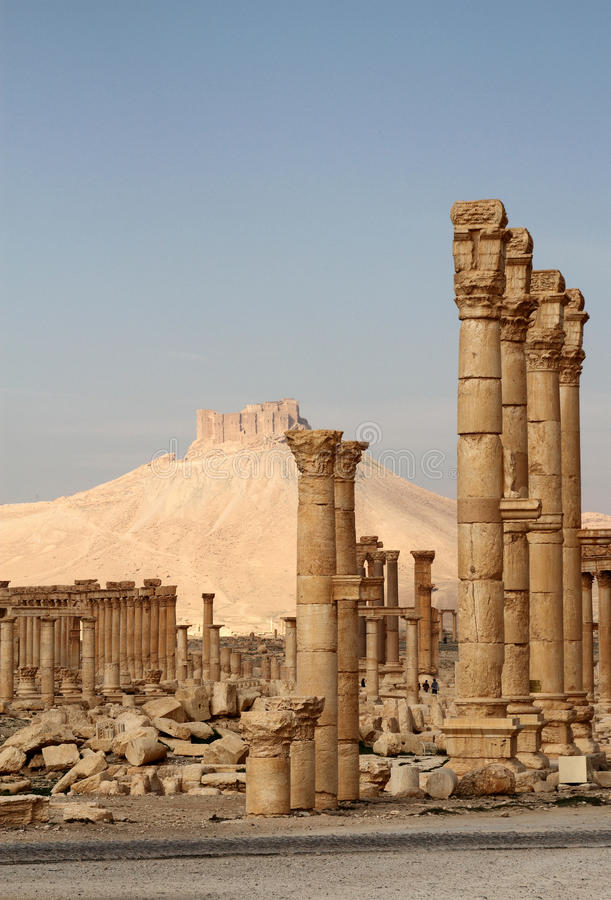 Download Palmyra Ruins And Qala'At Ibn Maan Castle Stock Photo - Image: 12643806