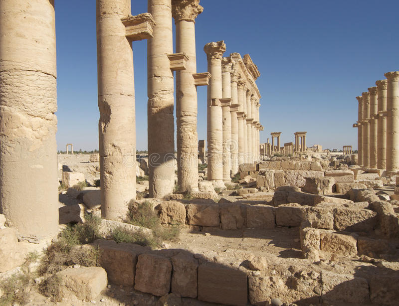 Palmyra ruins in Syria royalty free stock images