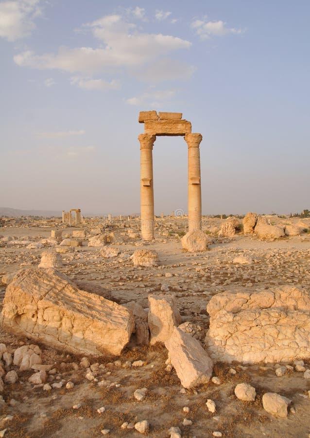 Palmyra, Siria imagen de archivo libre de regalías