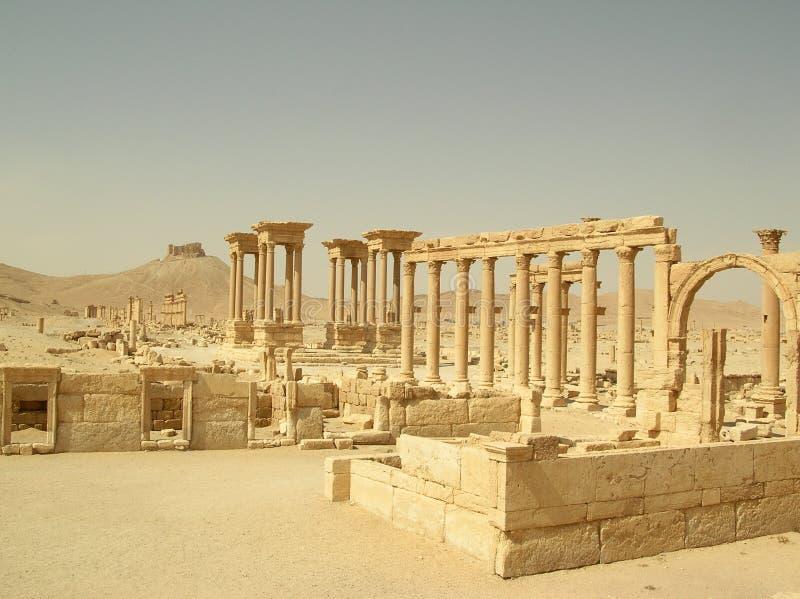 Palmyra, Siria imagen de archivo