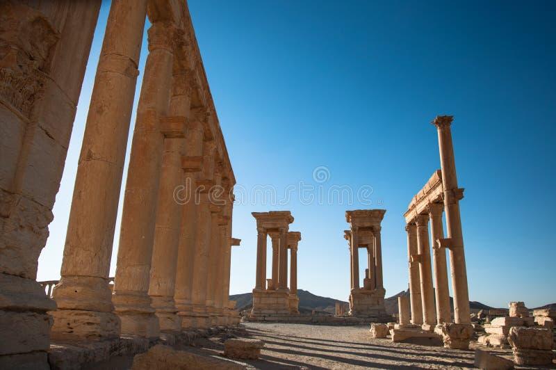 Palmyra, Siria imágenes de archivo libres de regalías