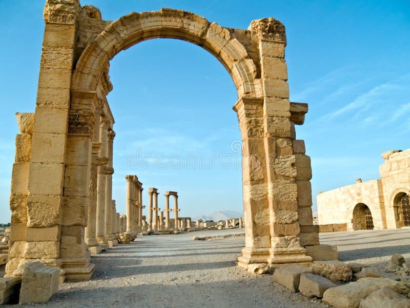 palmyra syria royaltyfri bild