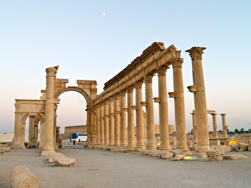 palmyra syria royaltyfria bilder