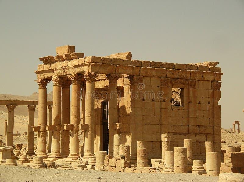 palmyra syria royaltyfri fotografi