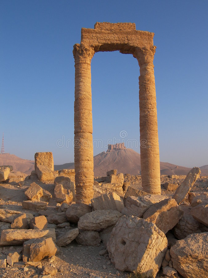 Free Palmyra, Syria Royalty Free Stock Photography - 5558727