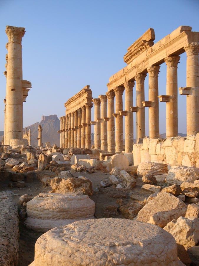 Palmyra Syrien arkivfoton