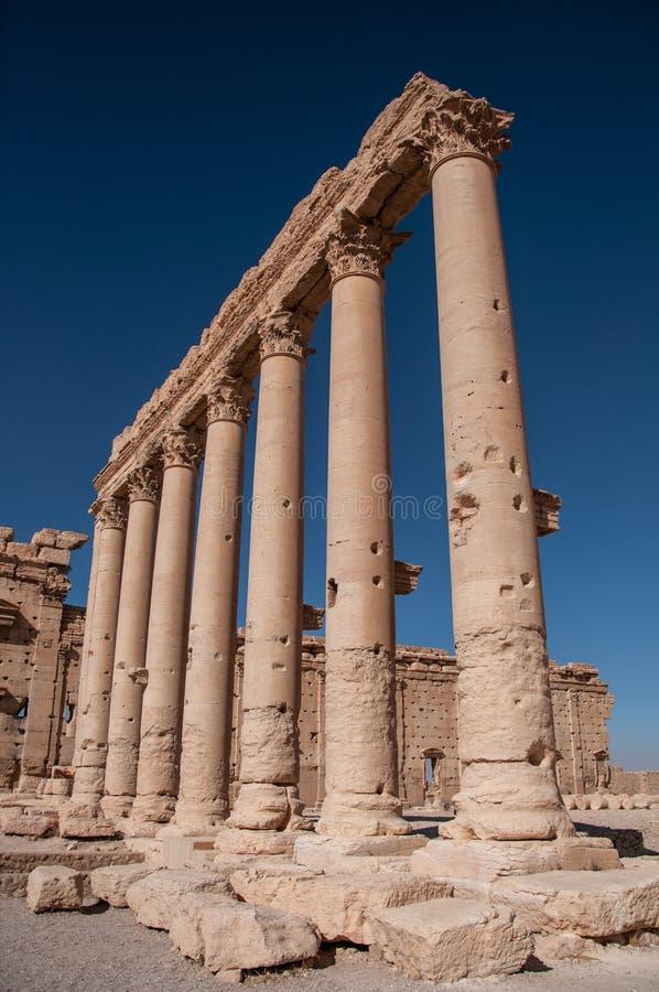 Palmyra Syrien royaltyfri fotografi
