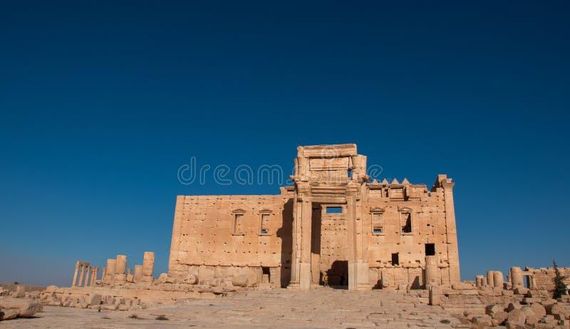 Palmyra Syrien arkivbilder