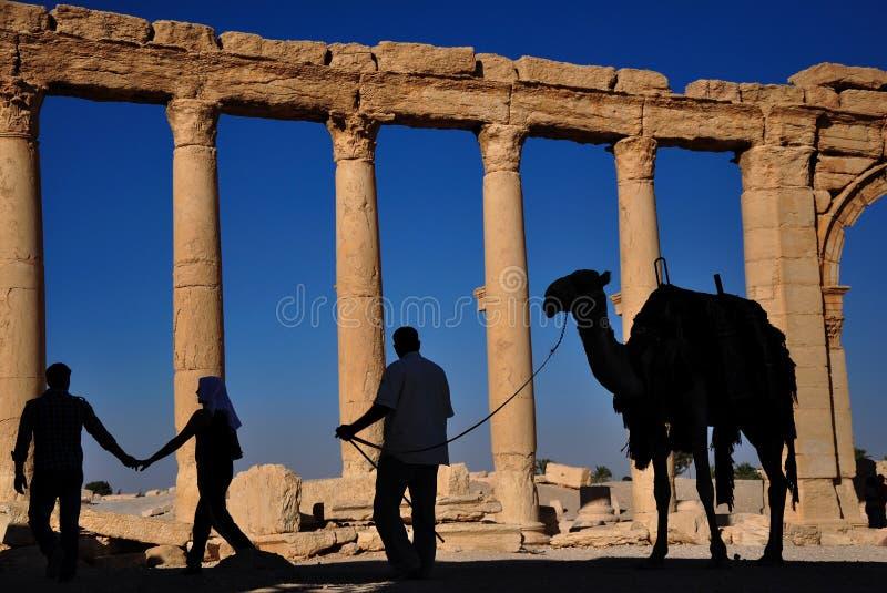Palmyra Syrien royaltyfri bild