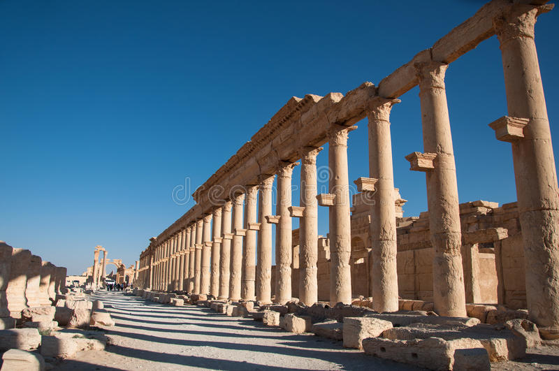 Palmyra Syrien royaltyfria bilder