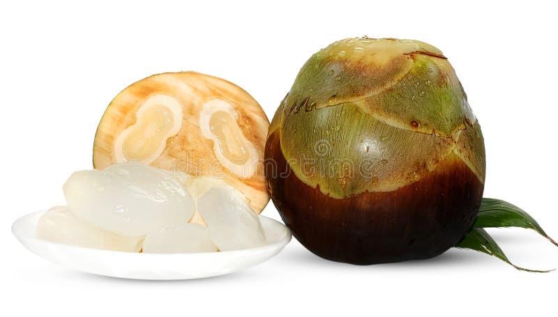 Palmyrapalm, Toddy palm of van de Suikerpalm Fruit op wit wordt geïsoleerd dat royalty-vrije stock afbeelding