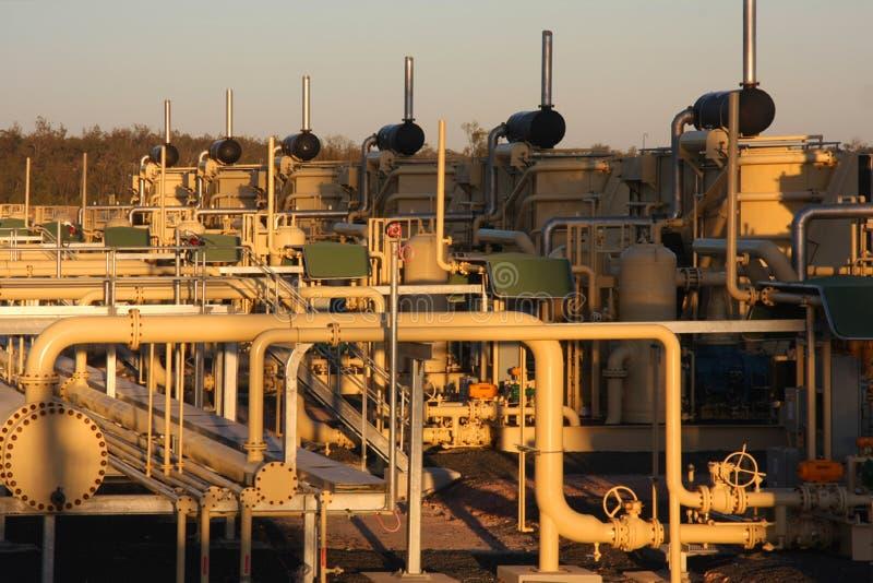 palnt del gas immagini stock