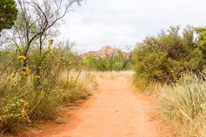Palo杜罗位于得克萨斯的Caprock悬崖峡谷系统P 库存照片