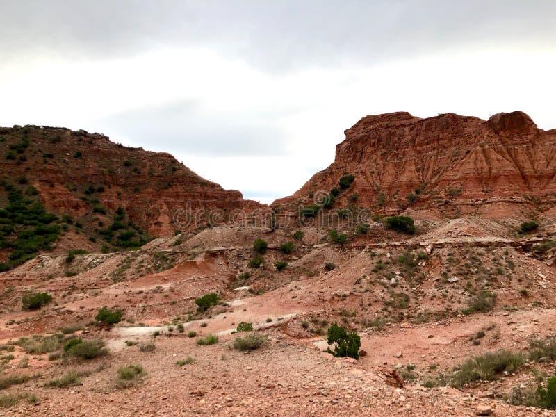 Palo杜罗峡谷风景 免版税库存图片
