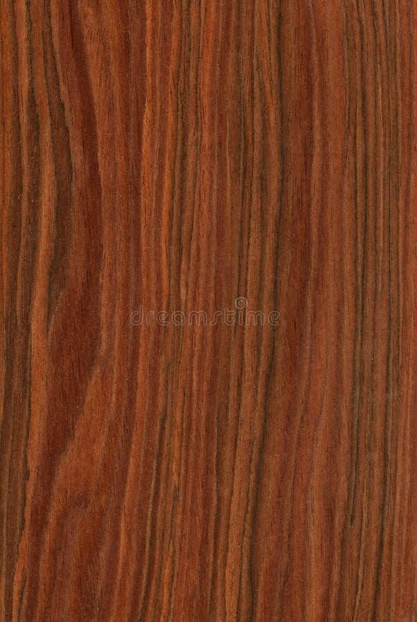 Palo de rosa (textura de madera) fotografía de archivo libre de regalías