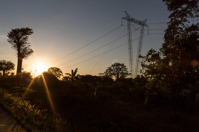 Palo di elettricità che passa attraverso la giungla con il tramonto fotografia stock