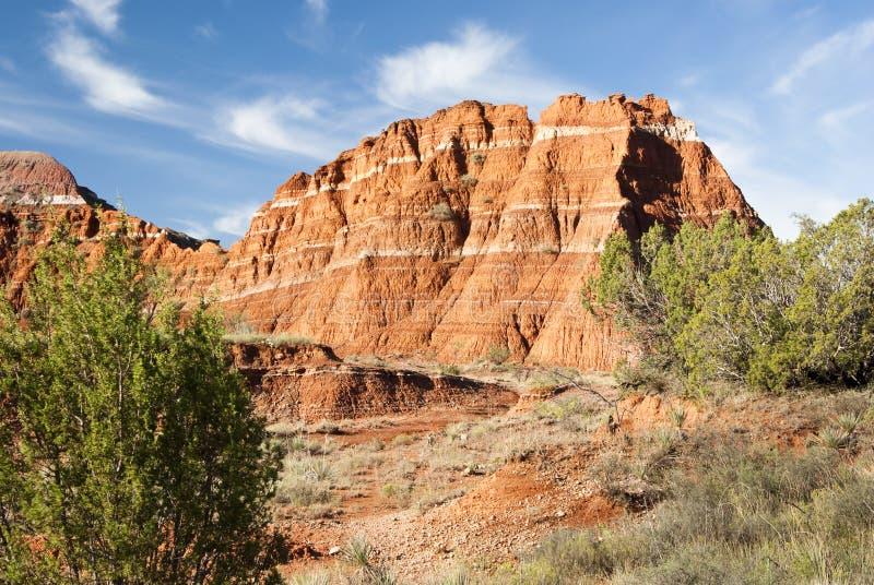 palo duro каньона стоковое изображение rf