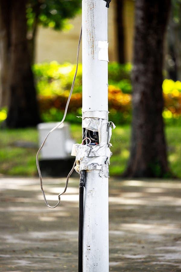 Palo elettrico nel giardino nocivo fotografia stock