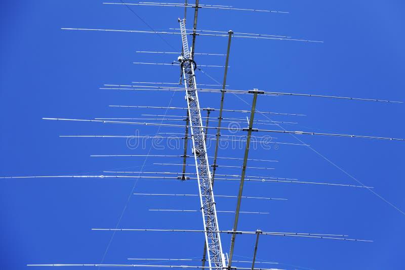Palo totalmente loco con las porciones de antenas fotografía de archivo libre de regalías