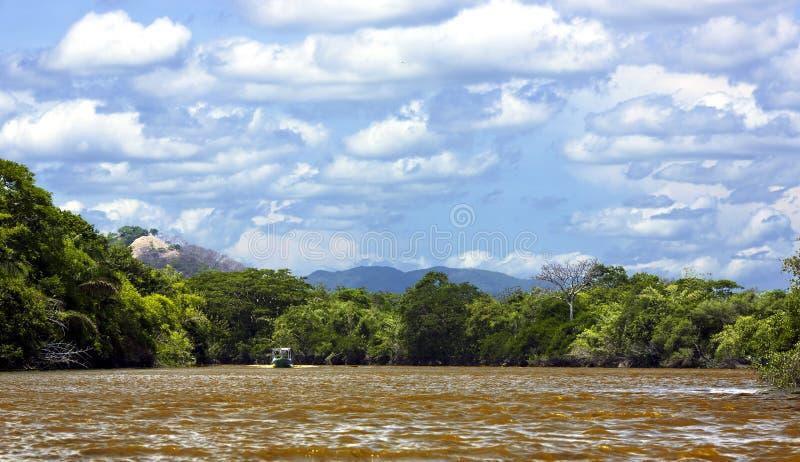 Palo Verde park narodowy w Costa Rica zdjęcia stock