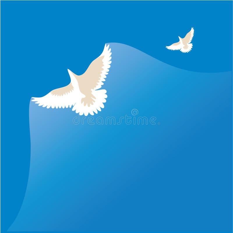 Paloma del blanco stock de ilustración