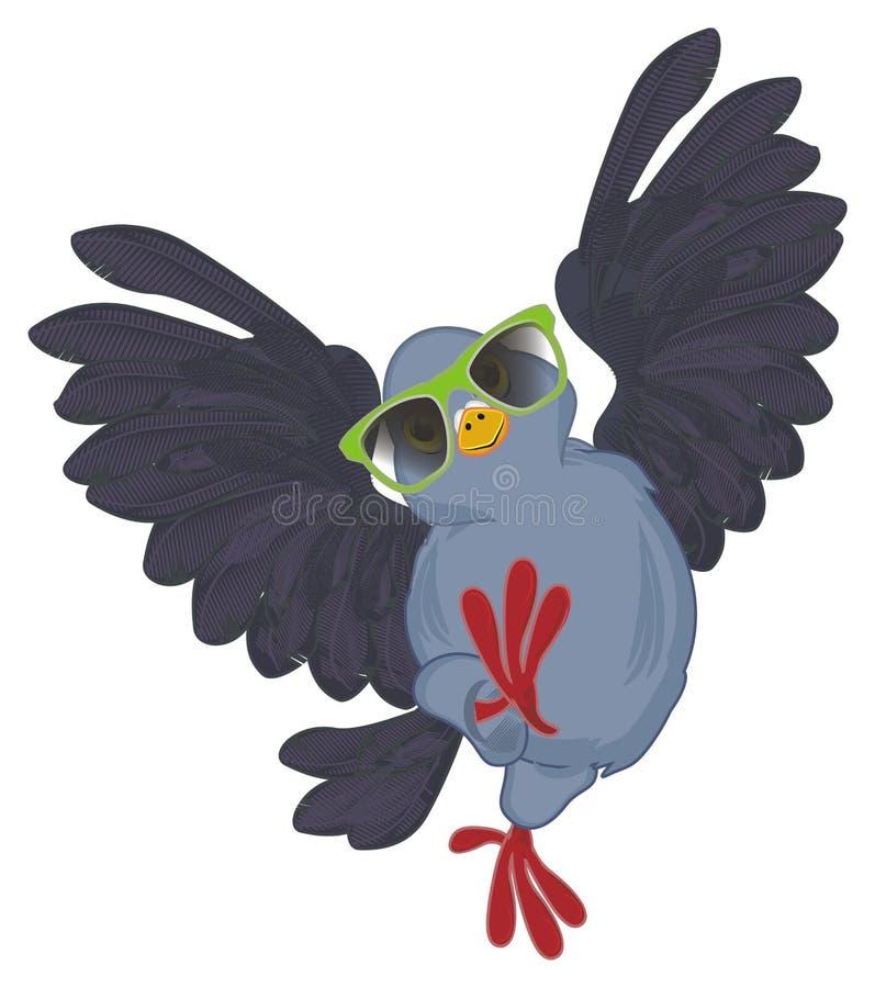 Paloma en gafas de sol stock de ilustración