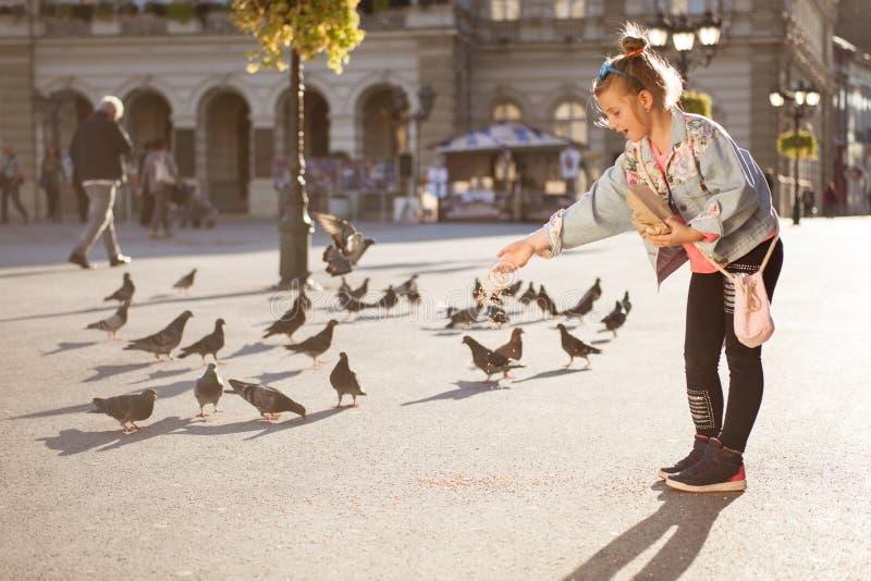 Palomas de alimentación de la niña adorable al aire libre imagen de archivo libre de regalías
