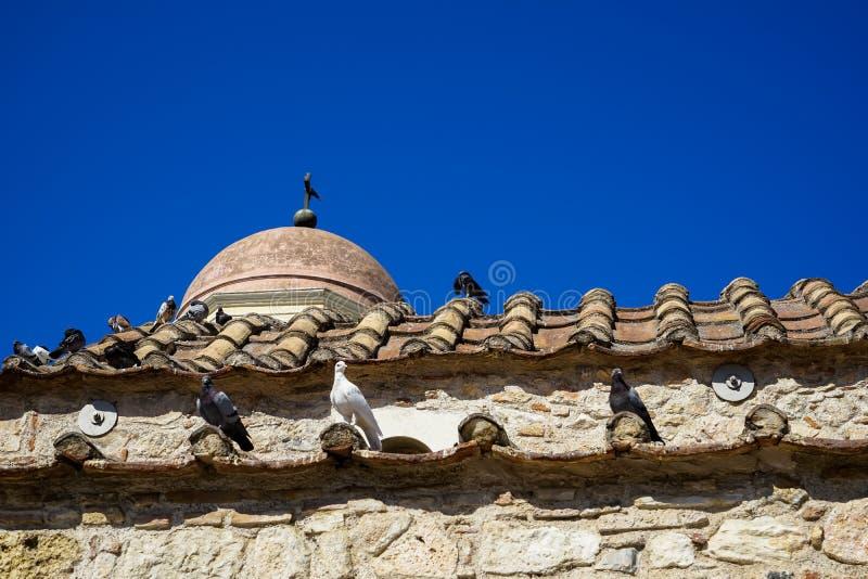 Palomas en el color blanco, negro y gris en la teja de tejado de la terracota de la pequeña iglesia clásica vieja en pared de pie imagen de archivo