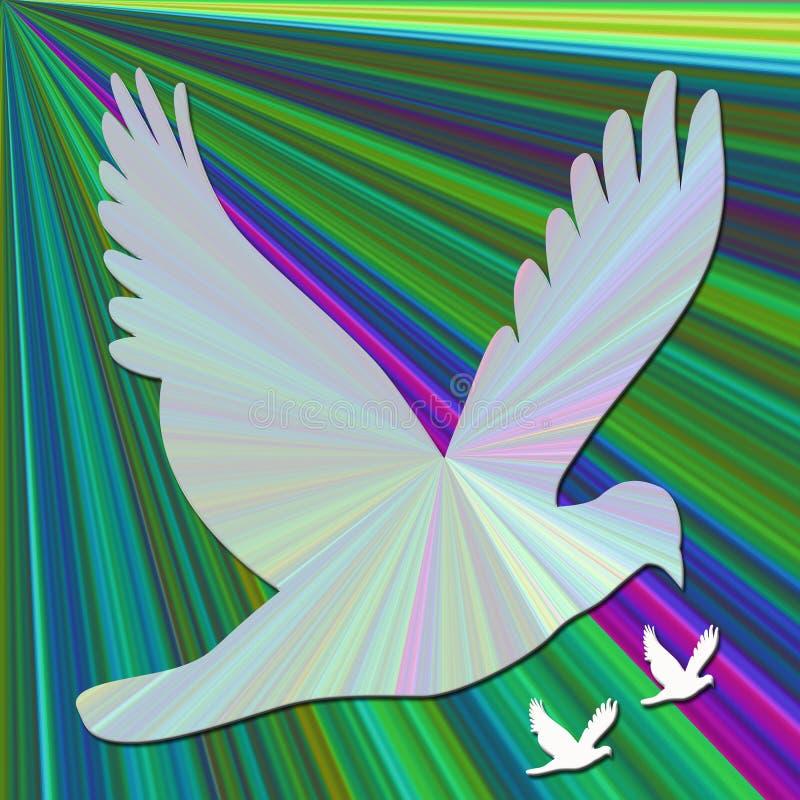 palomas en fondo del gradiente fotos de archivo