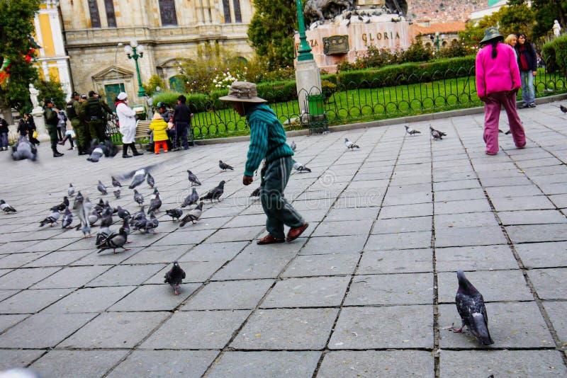 Palomas que injurian sobre la plaza Murillo en La Paz, Bolivia imagenes de archivo