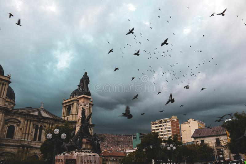 Palomas que vuelan sobre la plaza Murillo en Bolivia imagen de archivo libre de regalías