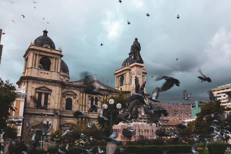 Palomas que vuelan sobre la plaza Murillo en Bolivia fotos de archivo
