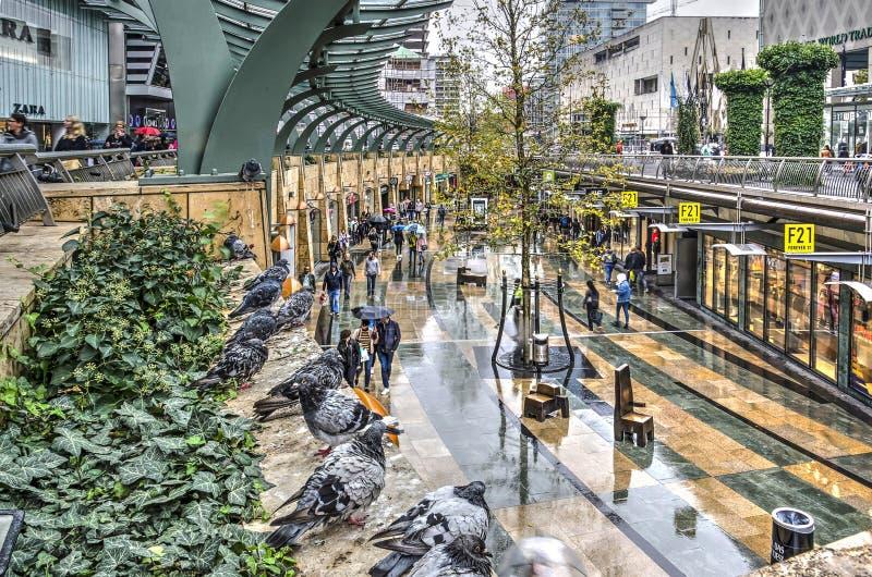 Palomas y compradores en un día lluvioso imágenes de archivo libres de regalías
