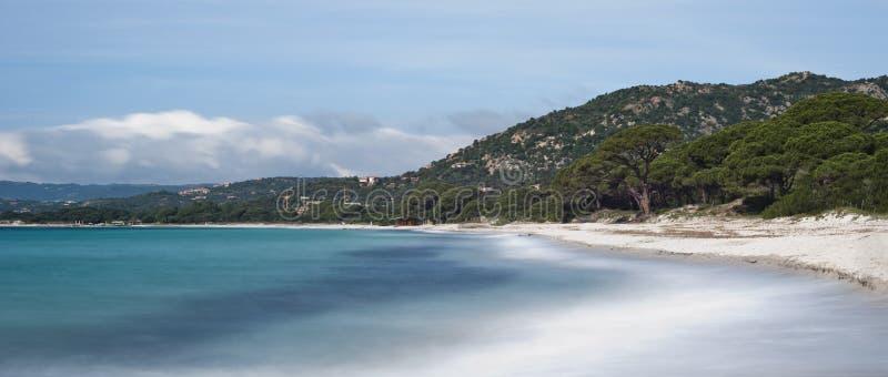 Download Palombaggia, Corsica stock image. Image of tour, landscape - 30973741