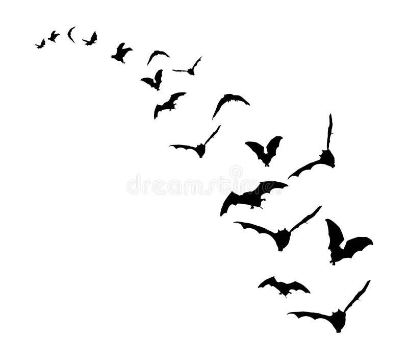 Palos del vuelo stock de ilustración