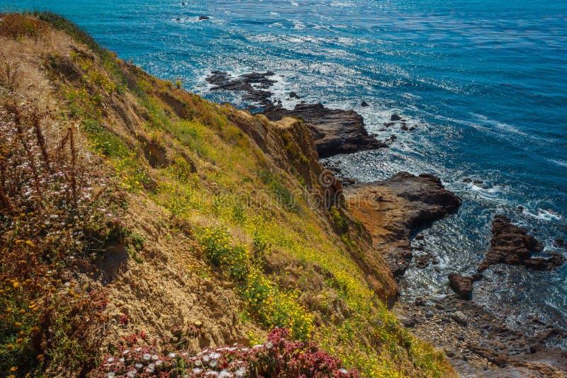 Palos Verdes Estates Super Bloom images stock