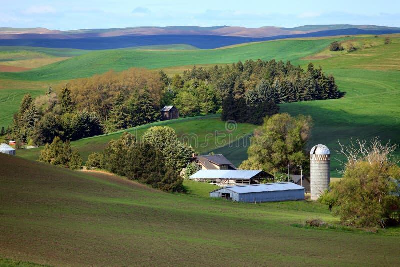 Palouse小山的农场 免版税库存图片