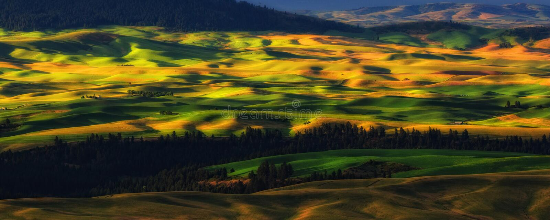 Palouse, штат Вашингтон стоковое фото